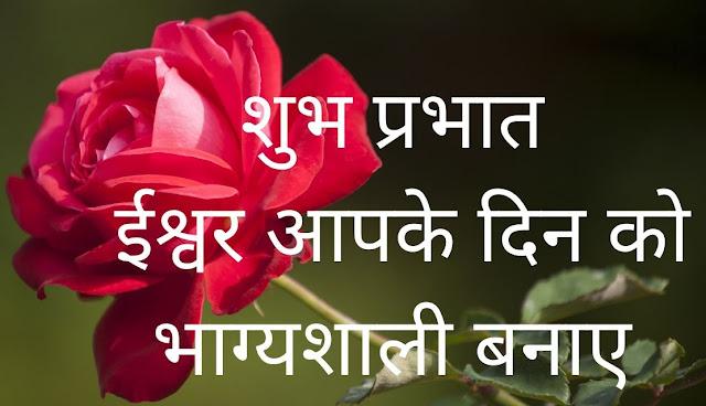 शुभ प्रभात ईश्वर आपके दिन को भाग्यशाली बनाए Red Rose Image