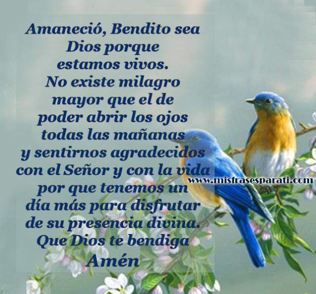Amaneció, Bendito sea Dios porque estamos vivos. No existe milagro mayor que el de poder abrir los ojos todas las mañanas y sentirnos agradecidos con el Señor