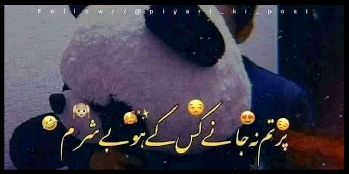 Best 49 Funny Urdu Quotes & Jokes of All Time