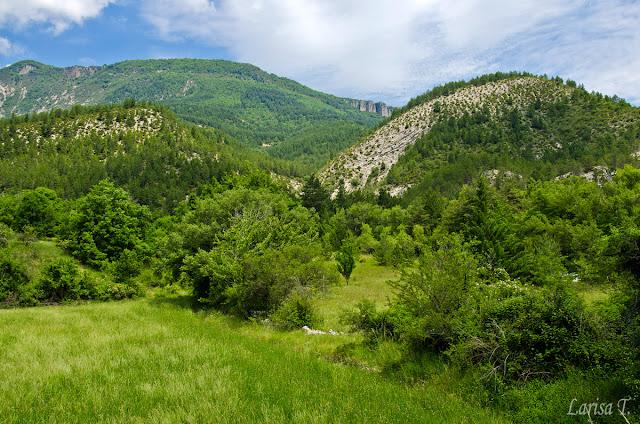 Alpii Provensali,