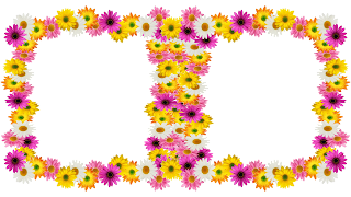 Spring flores frame - 2 photos png