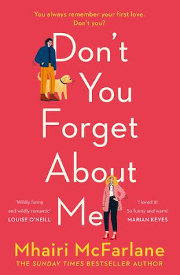 Bibliocrack Review   Don t You Forget About Me by Mhairi McFarlane