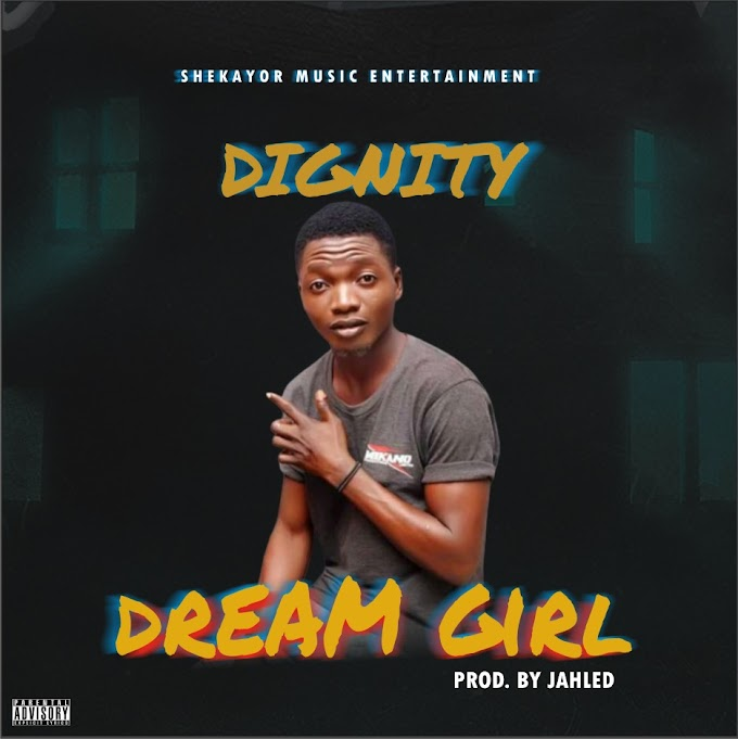 [Music] Dignity - dream girl