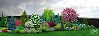 Ogród  kolorowy przez cały sezon
