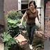 Viral, Foto Wanita Cantik Ini Jadi Kuli Demi Bisa Beli Rumah Sendiri