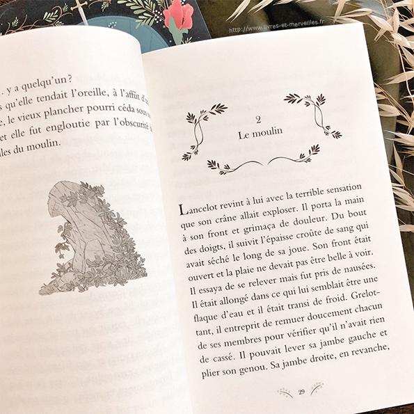 Roman jeunesse : Aliénor fille de Merlin - partie 2