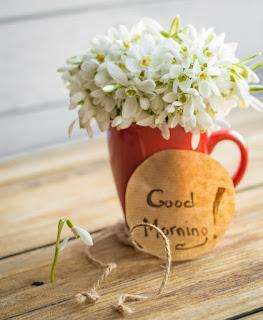 صور صباح الخير 2019 اجمل صور صباحية Good morning