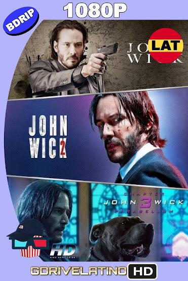John Wick Colección (2014-2019) BDRip 1080p Latino-Ingles MKV