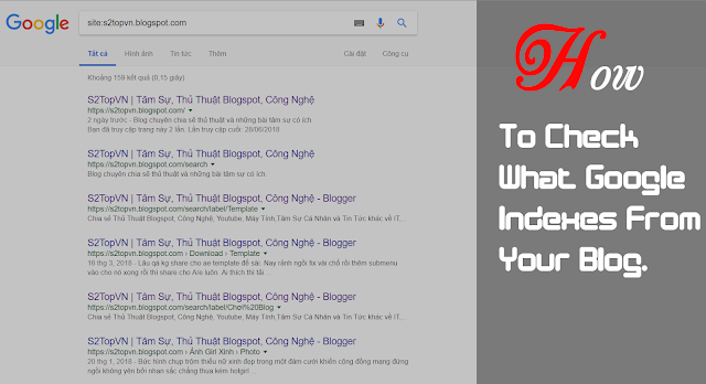 How To Check What Google Indexes From Your Blog.