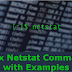 Netstat Command & Examples : View Monitor Network Statistics and Configurations In Linux