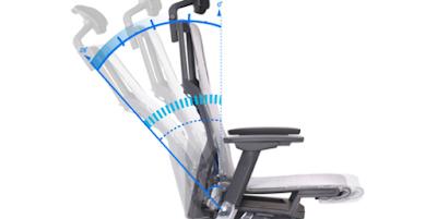 Livemotion Lumbar Support - Powerfit Chair
