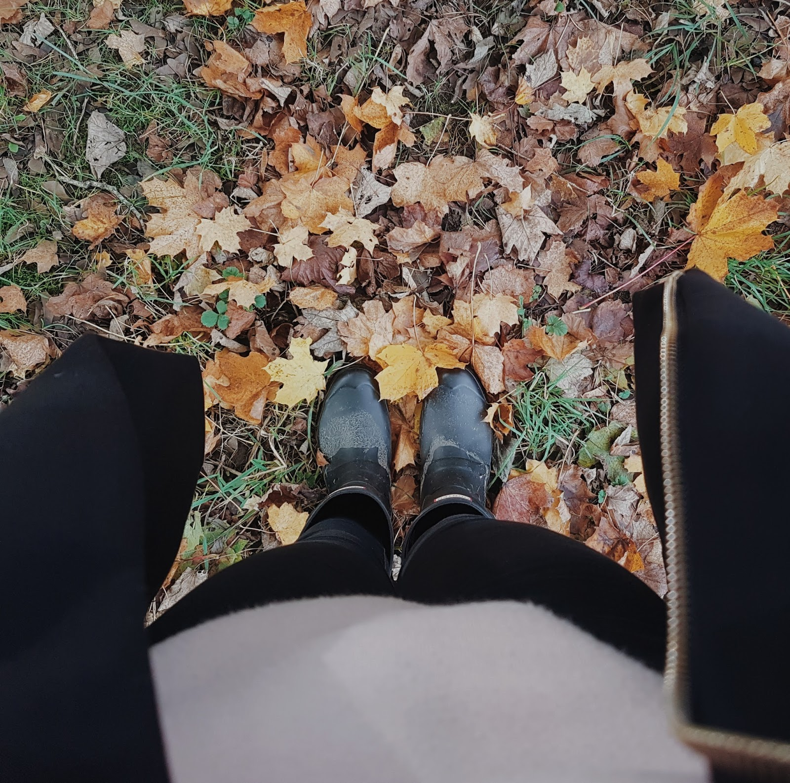 Hunter wellies stood on autumn leaves