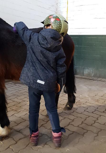 Vom Glück dieser Erde: Urlaub auf dem Küselhof und Reiterhof Witt auf Fehmarn. die Ponys zu putzen, zu pflegen und zu satteln, gehört zum Programm für kleine Kinder.