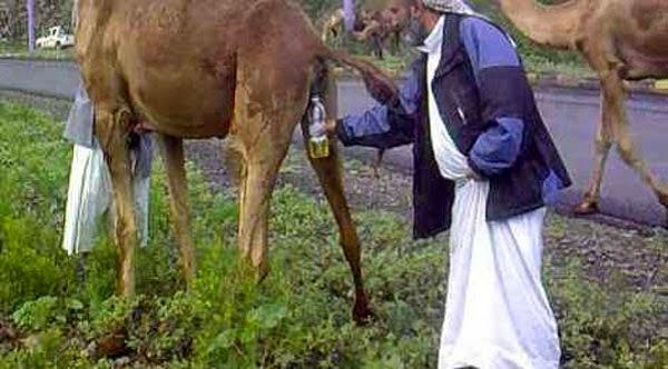 Keha urine dans une bouteille et gote sa pisse sur