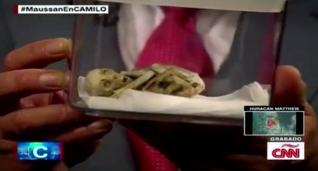 Ufólogo mexicano muestra supuesto cadáver de un 'extraterrestre' en la CNN