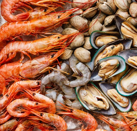 Questions : seafood ...?