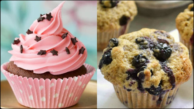 cup cake or muffin?