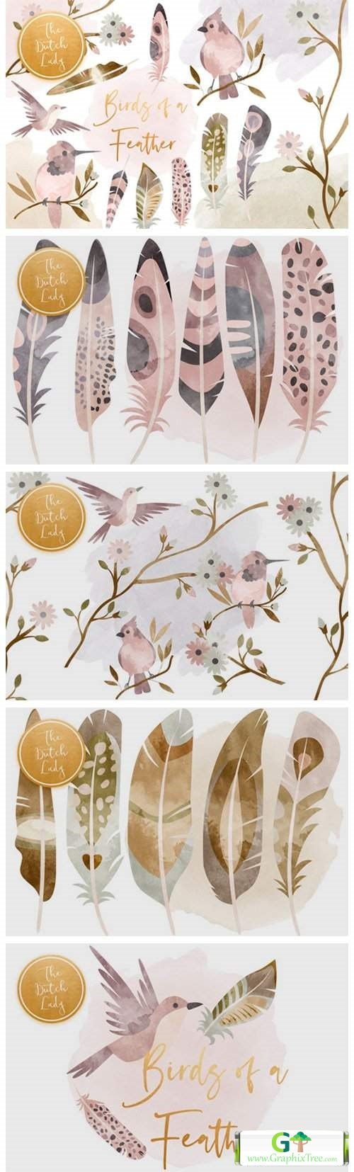 Birds & Feathers Clipart Set [Stock Image] [illustrations]