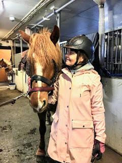 riitta reissaa, house of horses sadetakki ja suomenhevonen Lulu