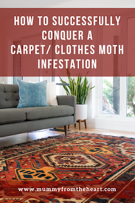 Carpet moth infestation pin