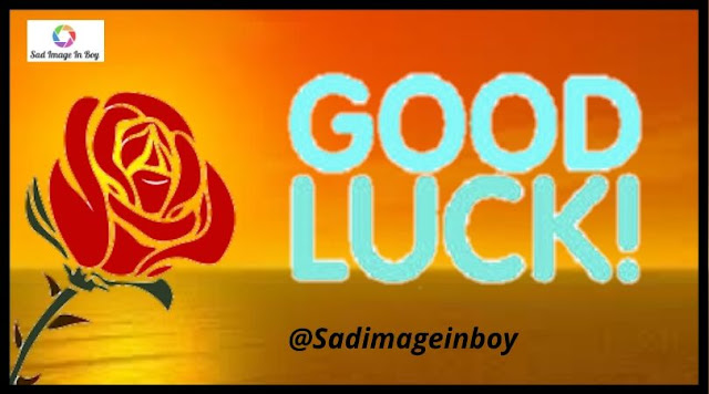 Good Luck Images | good night and good luck images cartoon, good luck on your permit test images