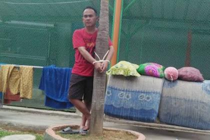 Mantan Pejabat Dinsos Diikat di Pohon Palem, Ini Penyebabnya