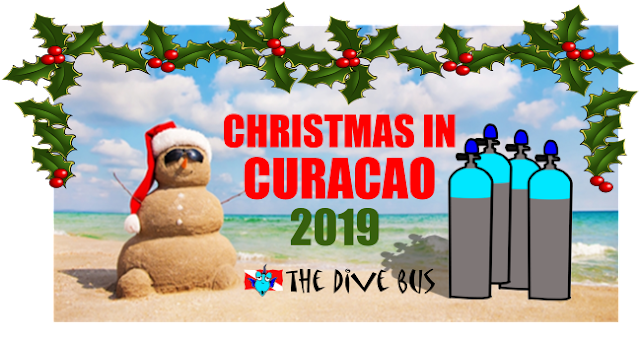 Christmas Festivities 2020 In Curacao News from The Dive Bus, Curacao: 5 GREAT reasons to dive Curacao