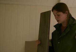 Frances lays grey laminate flooring