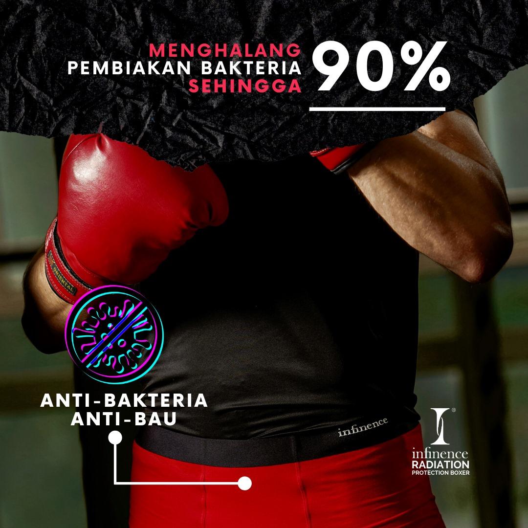 boxer anti bau