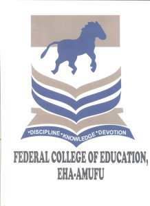 FCE Eha-Amufu Sandwich Degree Admission Form 2020 Contact Session