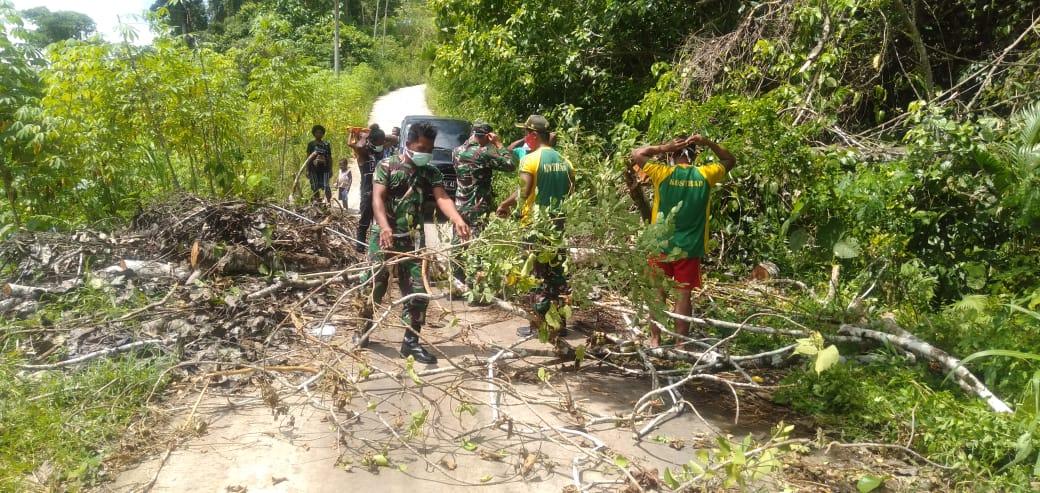 Prajurit Satgas Yonif 413 Kostrad Bersihkan Pohon Tumbang di Jalan Poros Jayapura