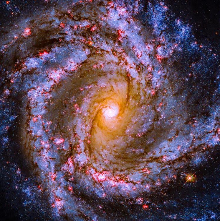 Hubble capta o coração luminoso da galáxia M61