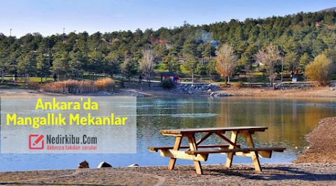 Ankarada Mangal Yapılabilecek Yerler