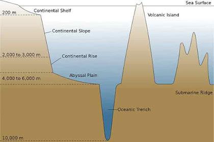 Bentuk-Bentuk Muka Bumi Dasar Laut