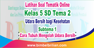 Soal Tematik Online Kelas 5 SD Tema 2 Subtema 1 Cara Tubuh Mengolah Udara Bersih Langsung Ada Nilainya