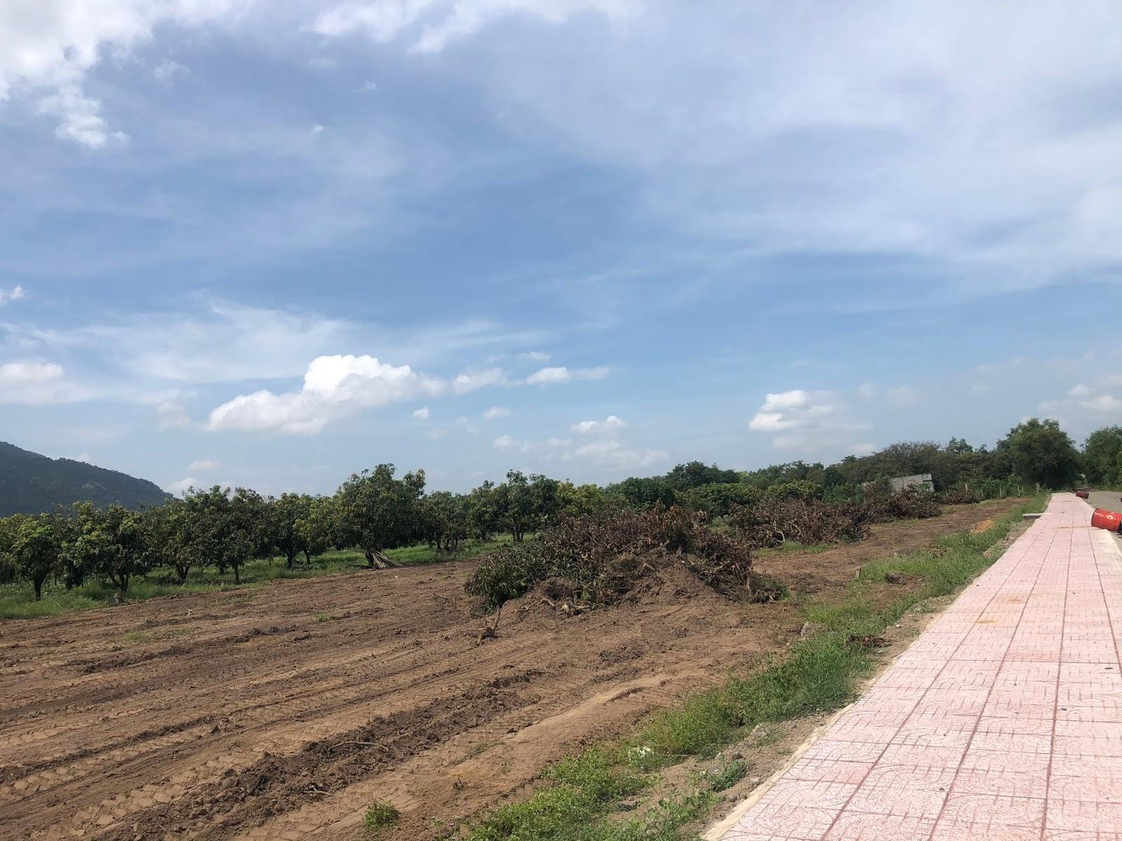 Bán 519m2 đất gần Trung Tâm thị xã Phú Mỹ