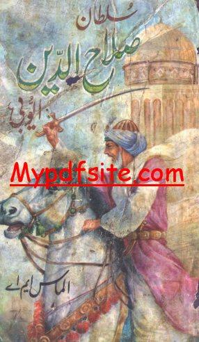 Sultan Salahuddin Ayubi Novel