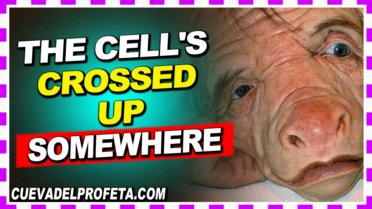 The cell's crossed up somewhere - William Marrion Branham