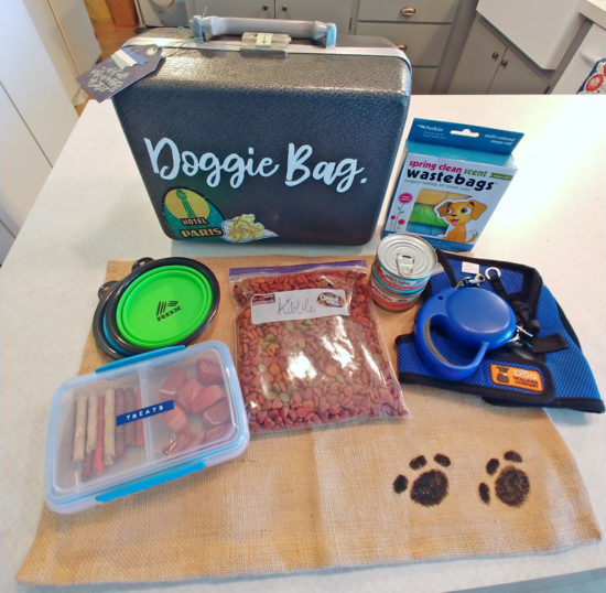 Doggie Bag Pet Travel Kit