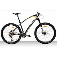 275 ag thrill ravage 10 mtb