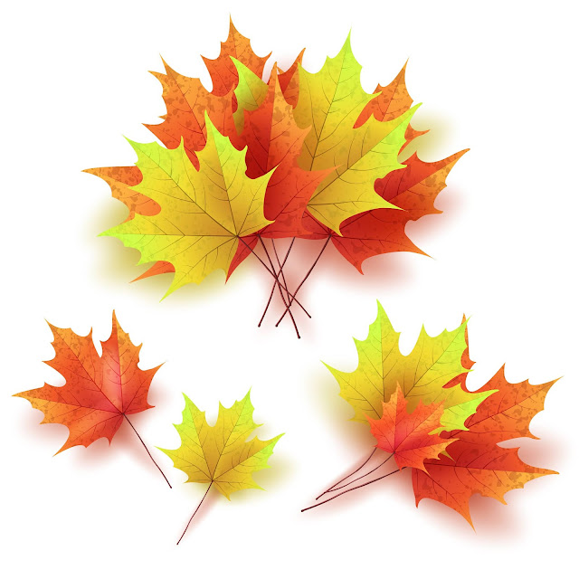 hello fall transparent background, thanksgiving leaves header transparent, autumn frame png, free autumn sms, fall png black and white,  autumn graphics, fall leaves border png,autumn leaves overlay free, free falling leaves overlay, thanksgiving leaves transparent background, autumm leaves png, child drawing leaf transparent background, autumn leaf clipart png, transparent fall border png, fall clipart png,aumtum leaf png, autumn leave ong,autumn leave png, autumn overlay,autumn clipart transparent, transparent backround thanksgiving leaves, autumn leaf png,fall presentation backgrounds, falling leafs png,thanksgiving brushes photoshop free, transparent tree autumn,