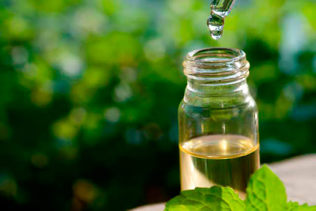 Top 9 Tea Tree Oil Uses and Benefits