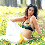 Mallu Lakshmi Rai Hot Pictures