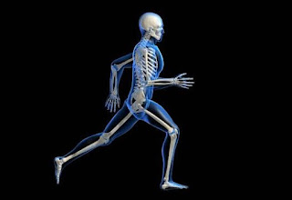 Macam Macam Penyakit Tulang yang Perlu Diketahui
