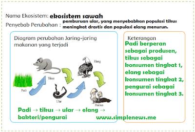 nama ekosistem dan penyebab perubahan www.simplenews.me