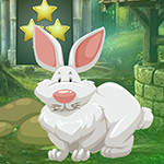Games4King Old Age Rabbit Escape