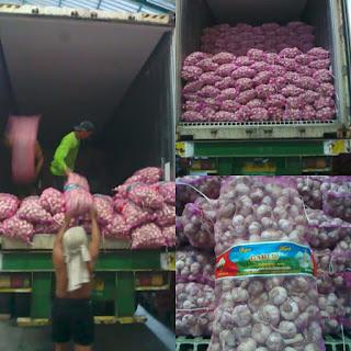 harga jual bawang putih di kalimantan