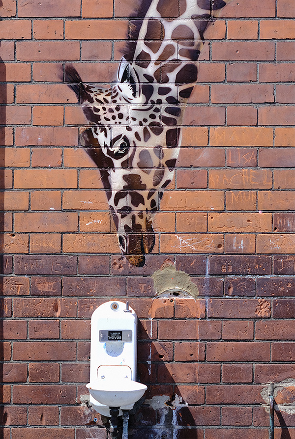A endangered species street artwork placed in a London school by artists James Straffon