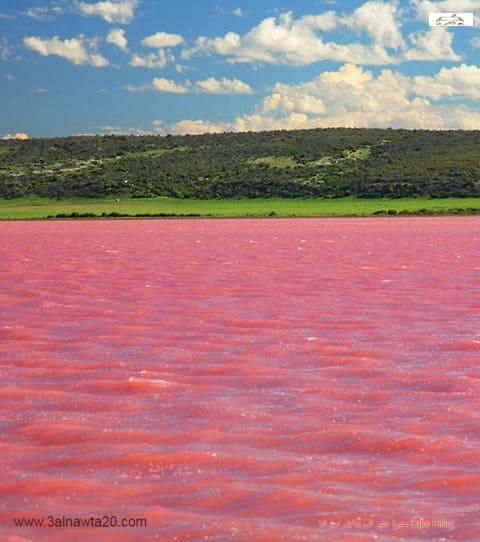 بحيرة هيلير الوردية في استراليا Lake Hillier