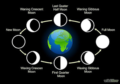 8-Lunar-Phases-Of-Moon-From-New-Moon-To-Full-Moon-To-New-Moon